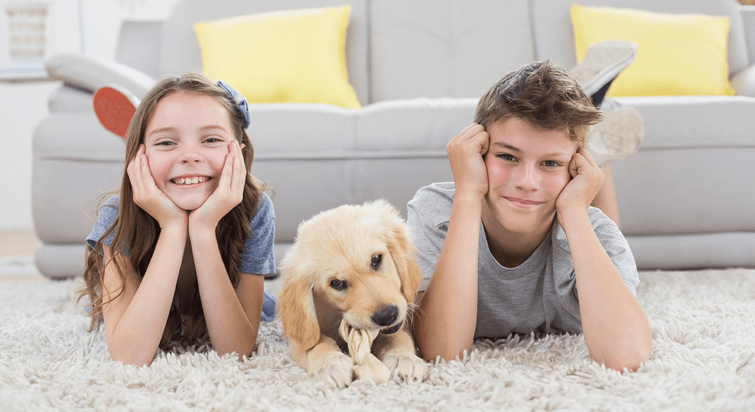 That Guy Kids and their Dog Enjoying Clean and Safe Carpet San Diego