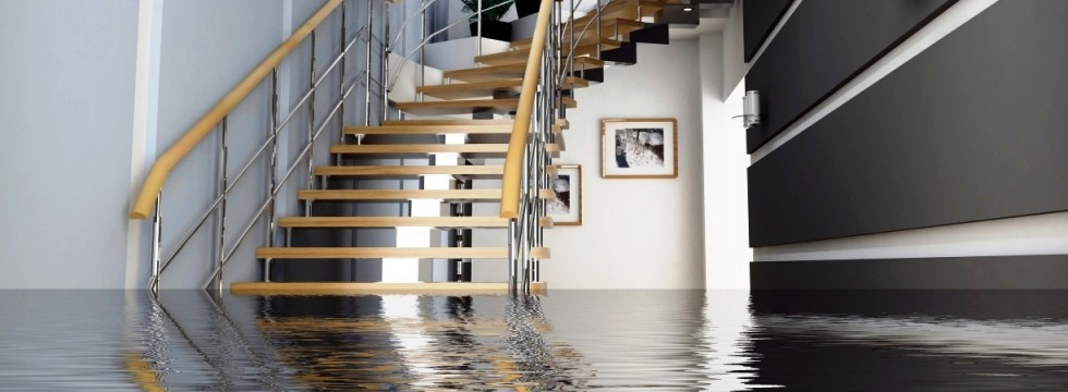 That Guy Residential or Commercial Flood Damage San Diego