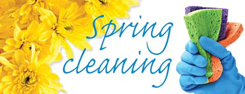 That Guy Spring Cleaning Tips San Diego